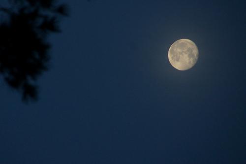 La lune tôt ce matin