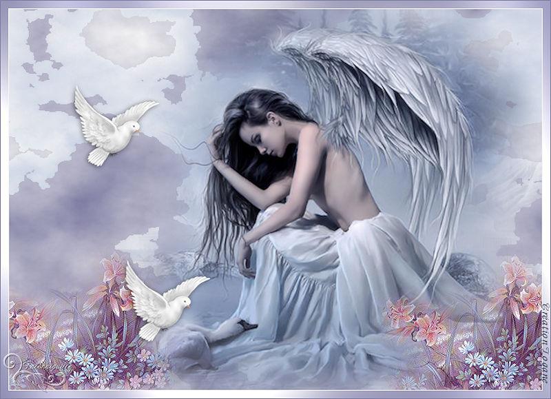 *** Ange de la Paix ***