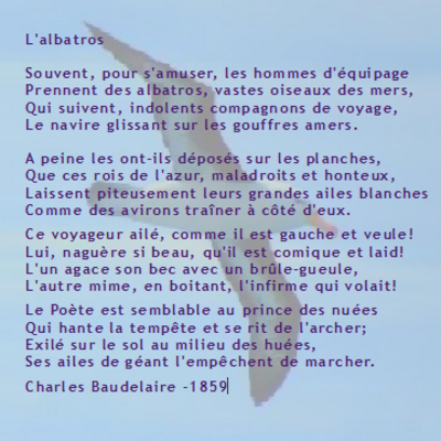 Baudelaire Charles - L'albatros
