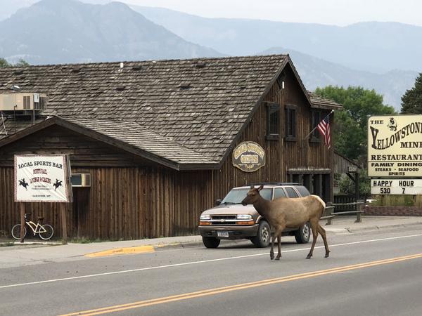 Gardiner, aux portes de Yellowstone