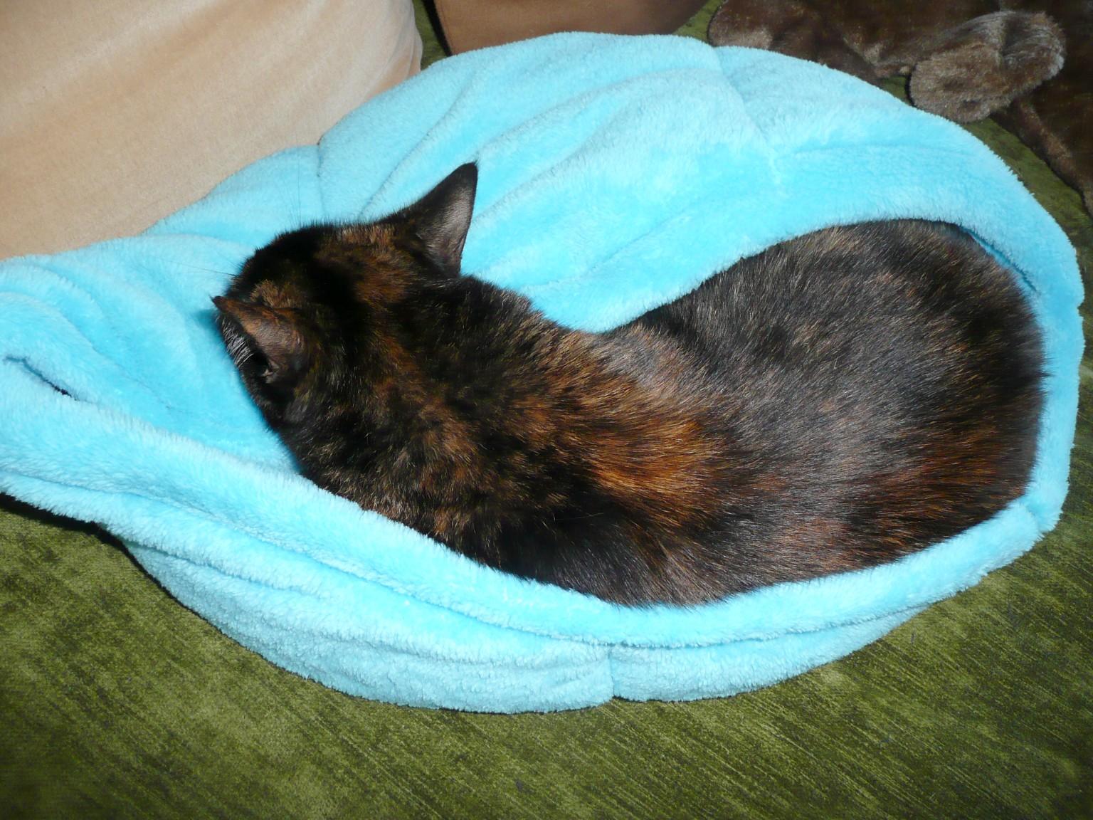 Corbeille pour chat en polaire douce