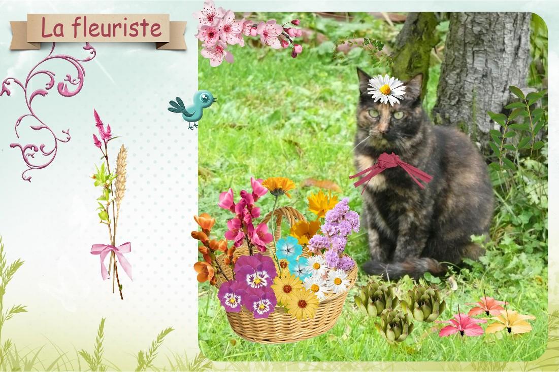Chat déguisé en fleuriste