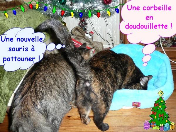 Père Noël en retard et cadeaux chats