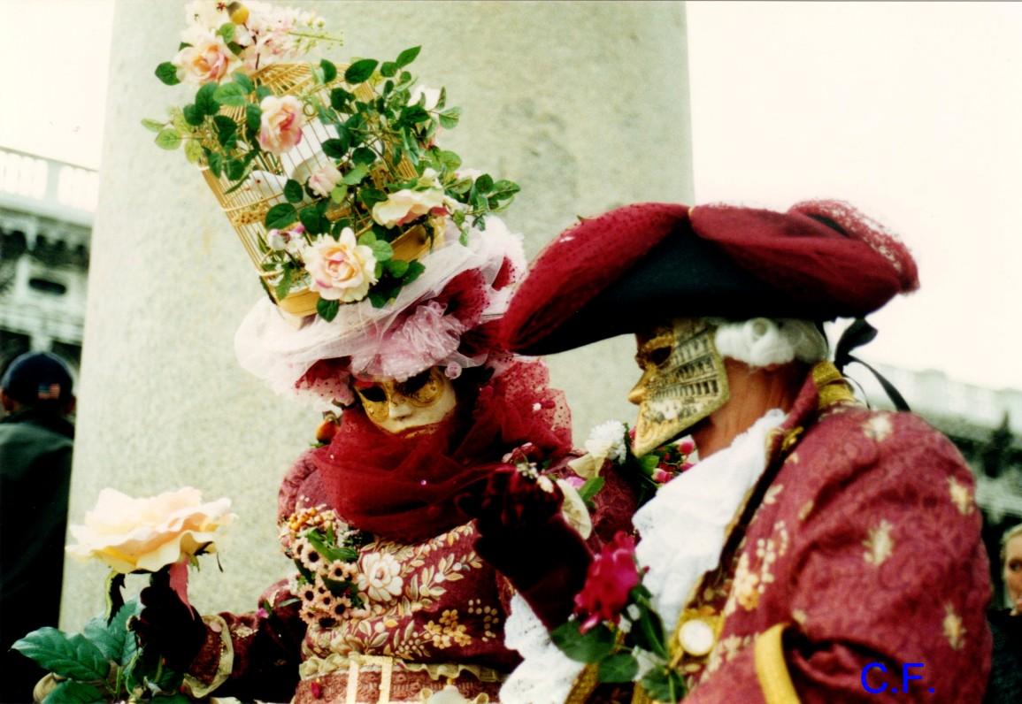 Carnaval de Venise oiseau et chat