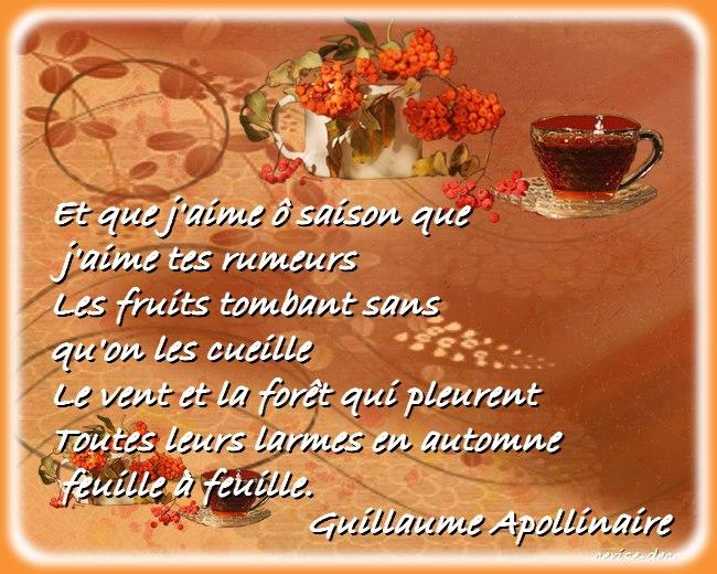 citation illustrée automne