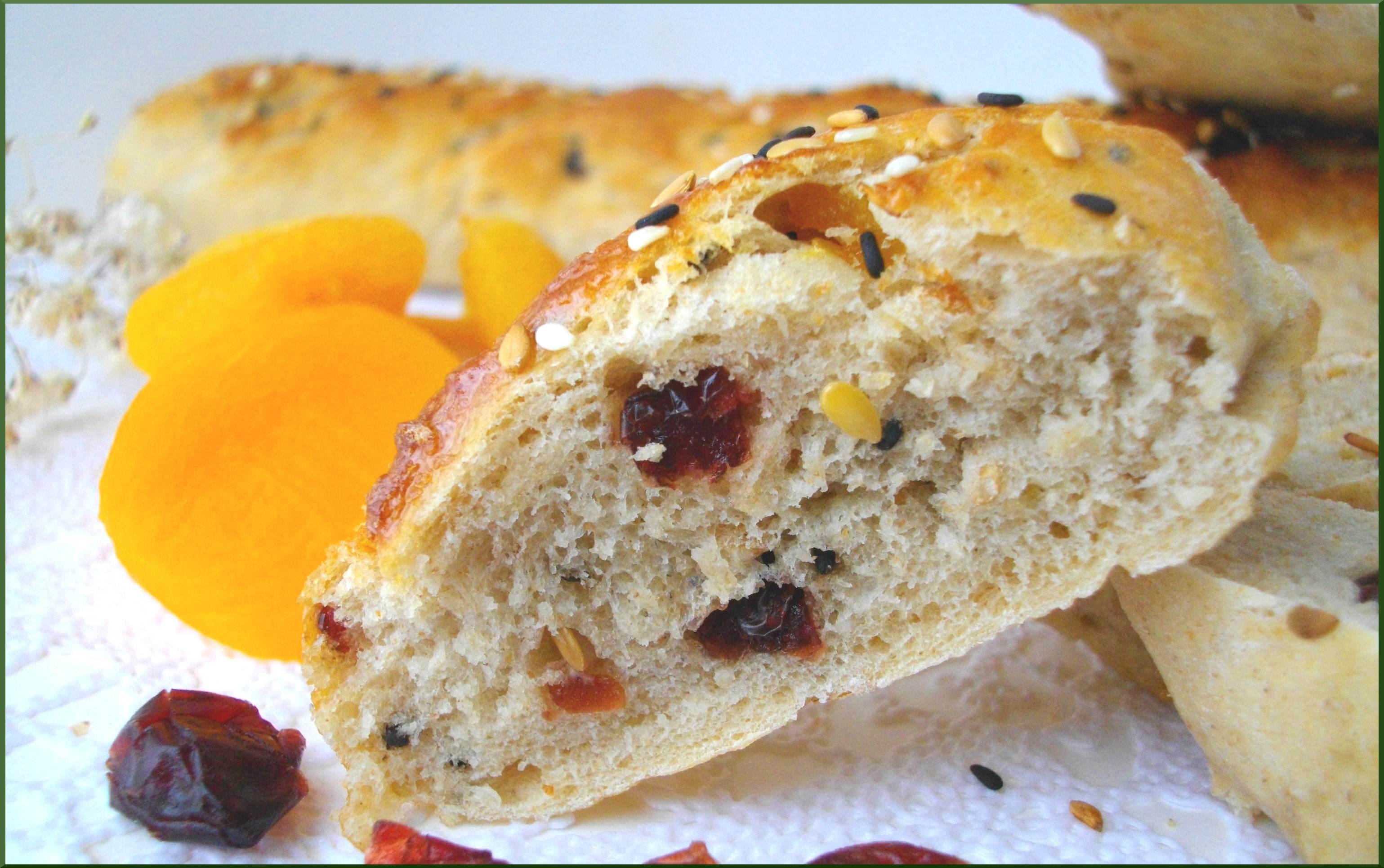 Fluttines semi-complètes aux Canneberges, Abricots et Graines du Boulanger...