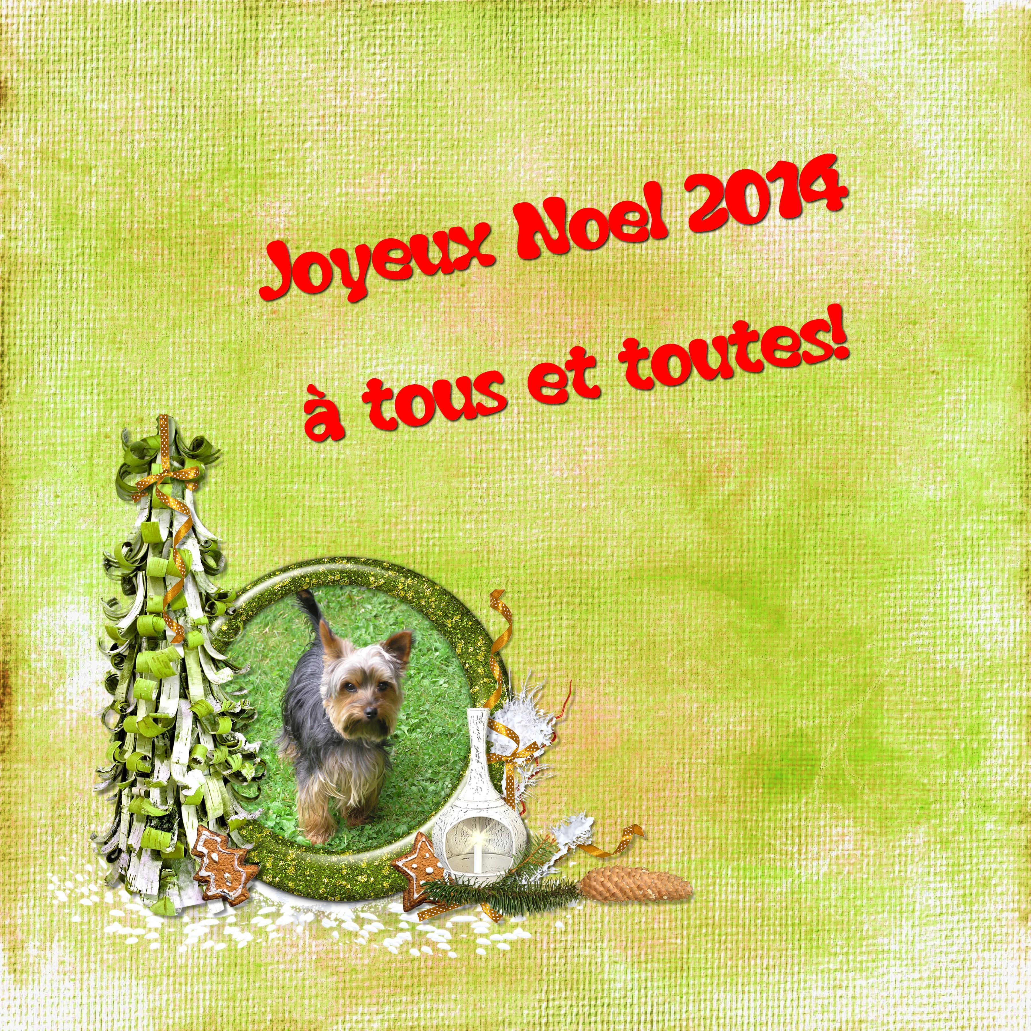 joyeux noel 2014