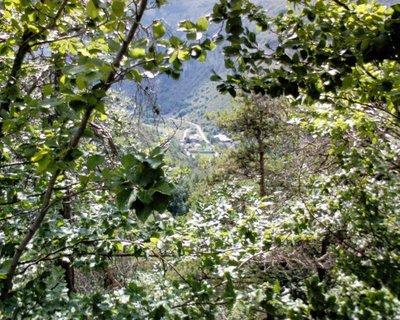 Blog de lisezmoi :Hello! Bienvenue sur mon blog!, Alpes de Haute-Provence - Faucon-du-Caire