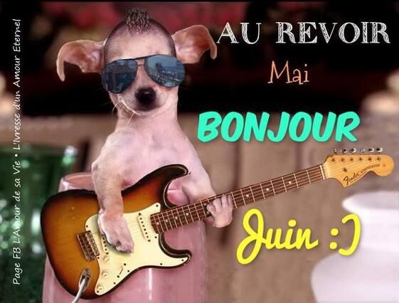 """Résultat de recherche d'images pour """"gif animé de bonjour juin"""""""