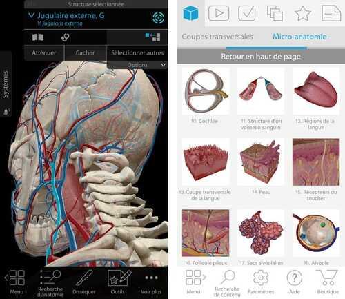 Grosse promo sur l'Atlas d'anatomie humaine Édition 2018