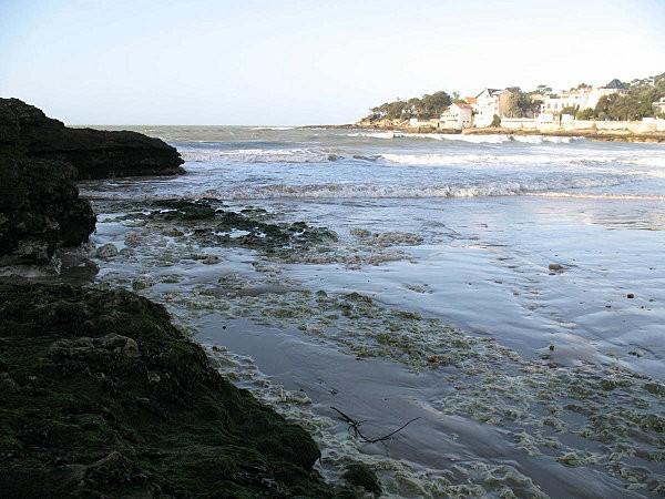 rochers à st palais sur mer