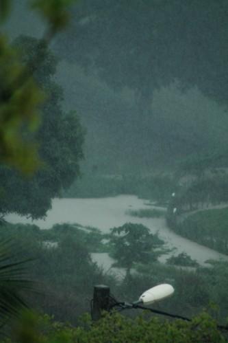 jardin-orage-0863.JPG