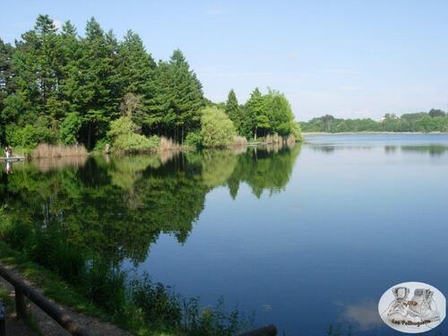 Au château et au Lac de St Quentin Fallaviers.
