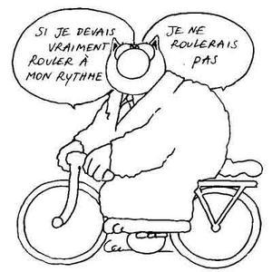 Bicyclette Geluck - chat-velo2