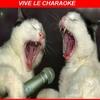charaoké.jpg