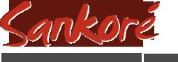 La version 2.1 du logiciel Open Sankoré est sortie
