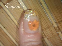 Petite fleur orange!