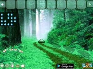 Jouer à Eastern forest escape