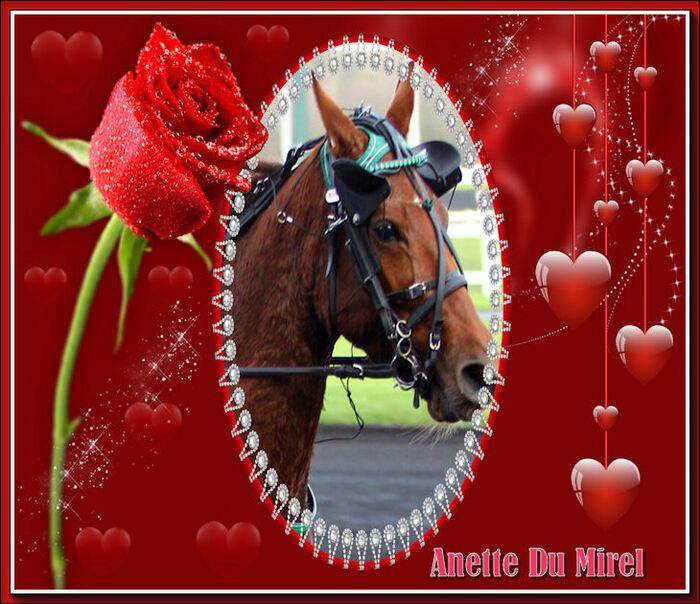 Anette Du Mirel