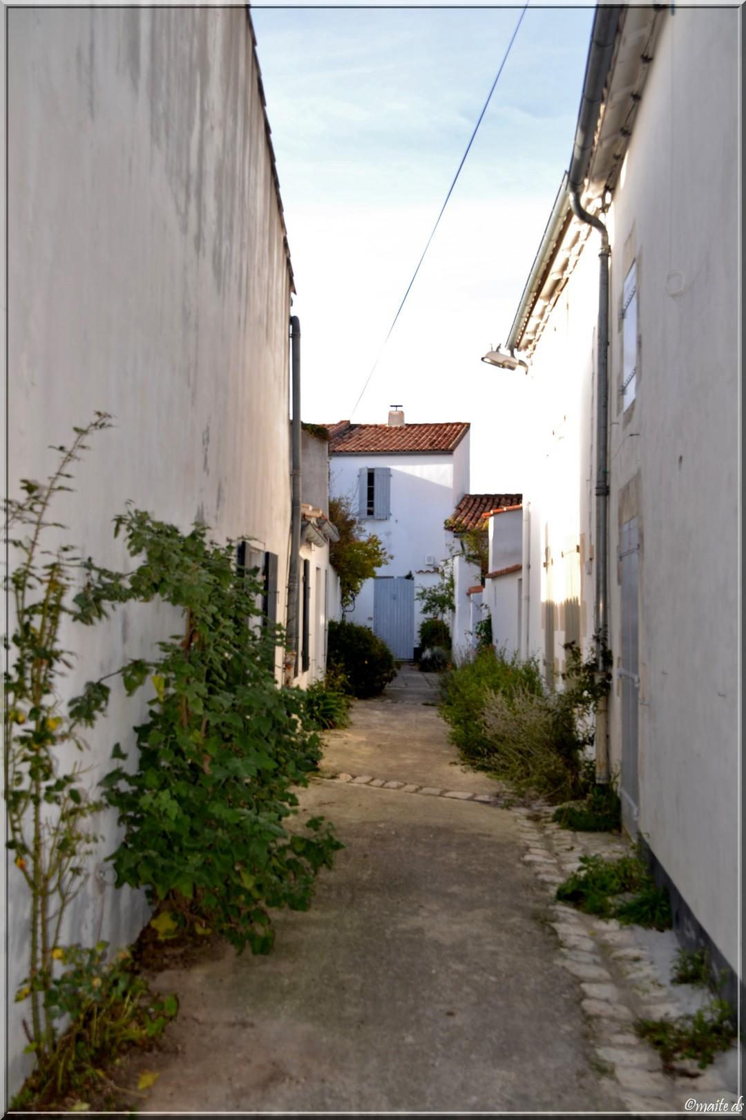Dans les rues d'Ars en Ré (17)