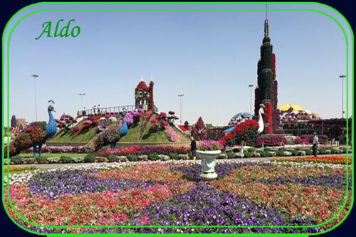 PPS Miracle garden