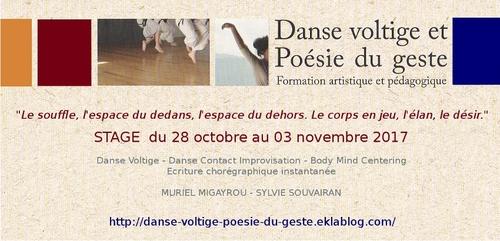 • Danse voltige poésie du geste (formation)