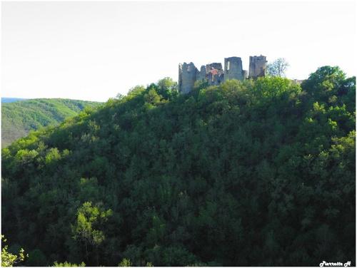 Le château de Roussillon