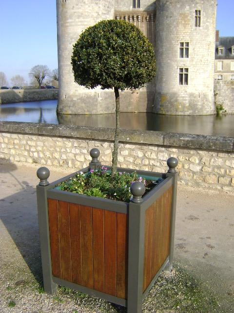 sully sur loire la petite ville des petits arbres en pot hauts de france media. Black Bedroom Furniture Sets. Home Design Ideas