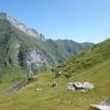 Retour dans la montagne de Pouey Arraby