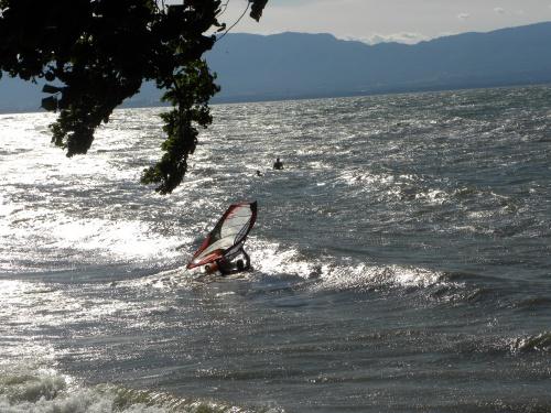 Ballade sur le Lac Leman  dans la village  de Corzent a Thonon les bains
