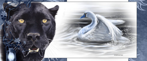 journal profil  animal sauvage