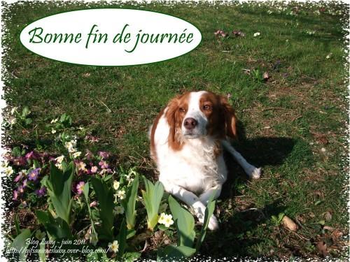 BONNE FIN DE JOURNEE EMY 1832X1374