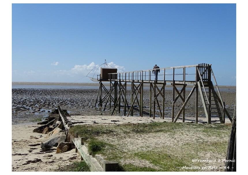 Moutiers en Retz - sentier du littoral - 2016
