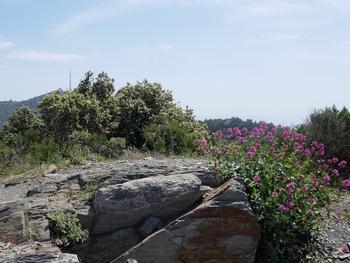 Au sommet du Montjoie. Au fond, les antennes de ND de la Garde