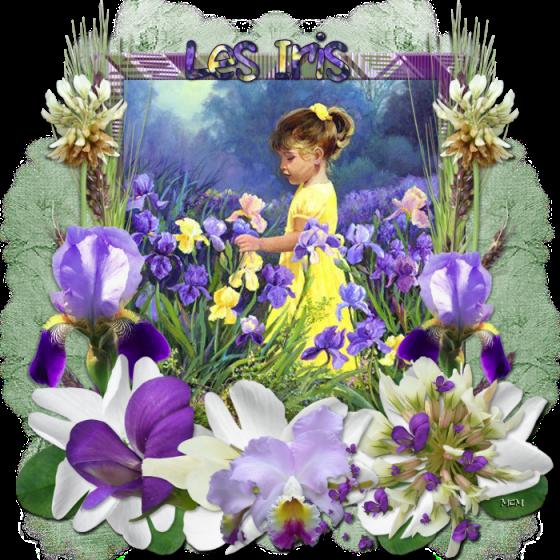Cartes Et Poèmes Fleurs Page 10 Mcreations
