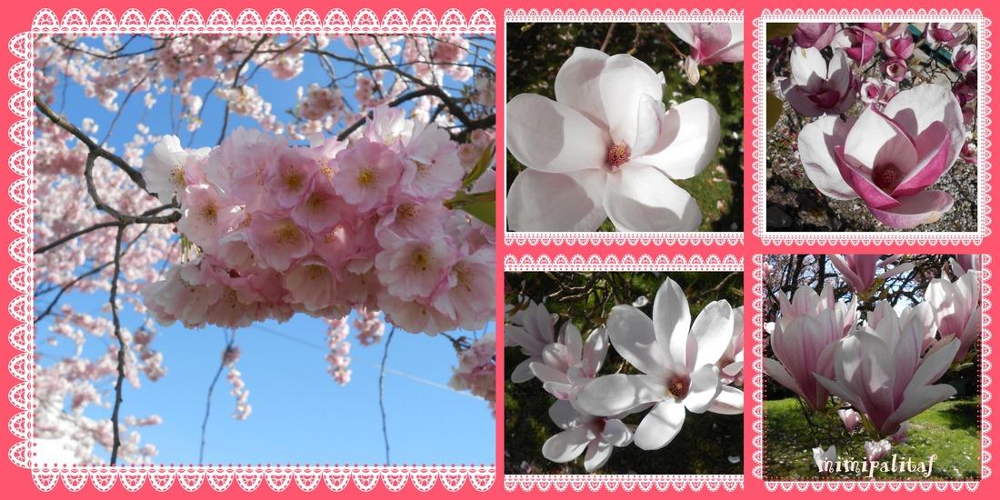 cartes de printemps...