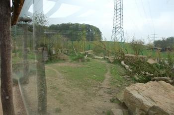 Zoo Osnabruck d50 2012 076