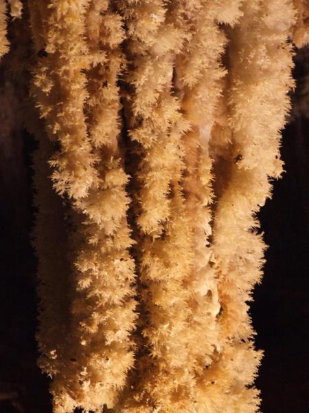 Des pompons de calcaire