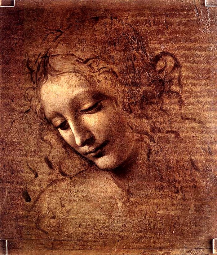 2. Léonard de Vinci /carnet de dessins 2