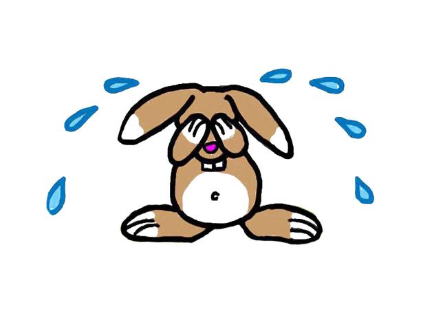 Ptilou chante a tue tete page 3 ptiloupassion - Mon petit lapin s est cache dans le jardin ...