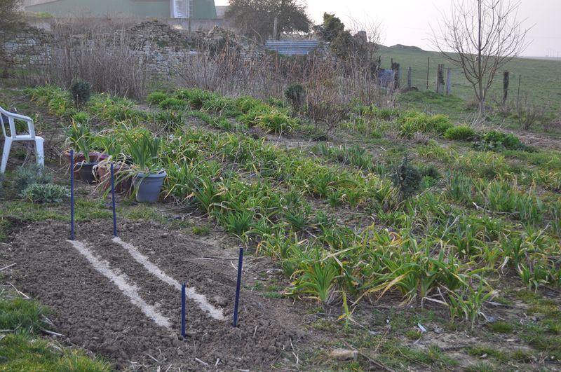 Etat du jardin