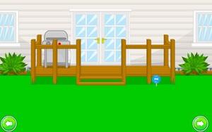 Jouer à Crazy yard escape