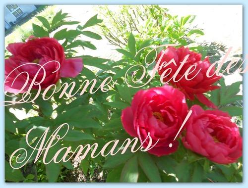 et bonne fête à toutes les mamans du monde....