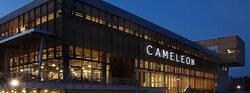Wolu1200 : la société de vente Cameleon en difficulté