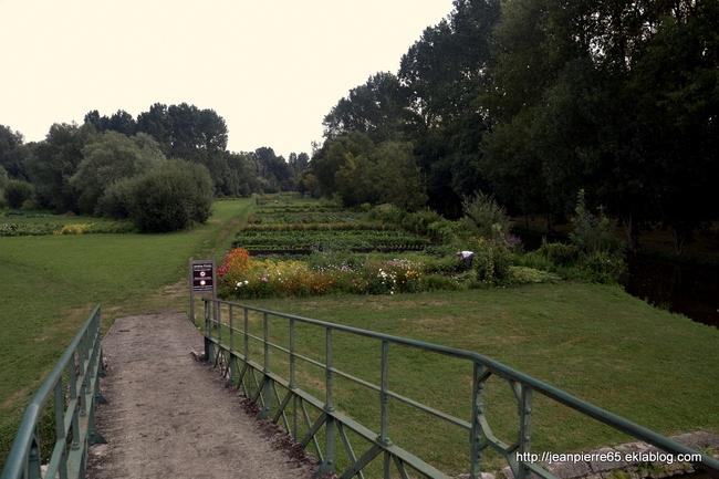 2015.08.12 Arçais, Le Vanneau (Marais Poitevin) dans les Deux Sèvres