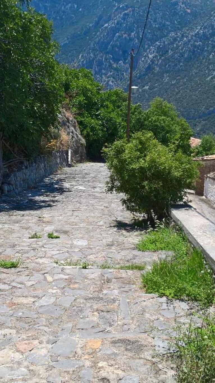 Musées  etc Grèce.