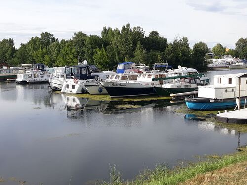Toujours en bord de Saône