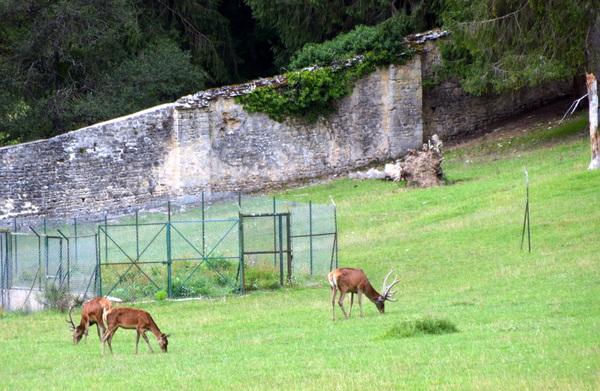 Visite à l'Abbaye du Val des Choues