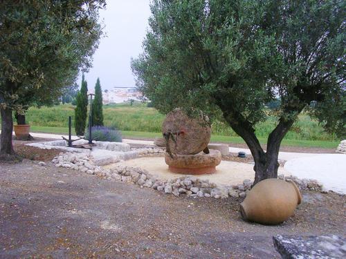 III-Jardin-du-monde-Toscane-19-06-06.jpg