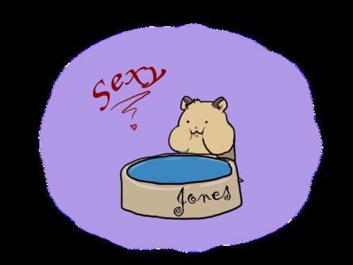 Jones, le hamster BG